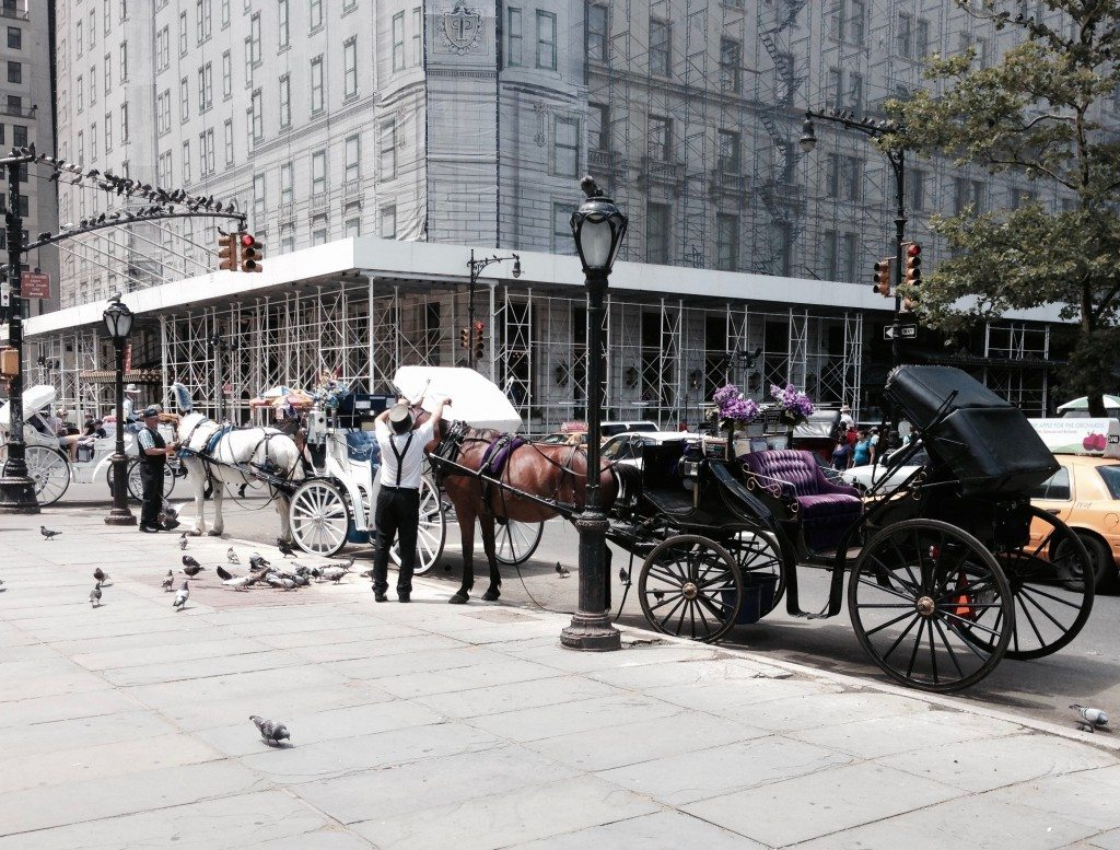 New York Kutschenfahrt