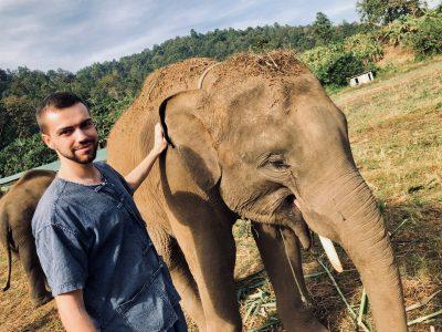Elefantencamp in Chiang Mai: Auf Tuchfühlung mit Elefanten